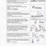 ejercicios fortalecimiento